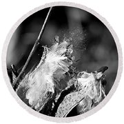 Gone To Seed Milkweed 2 Round Beach Towel