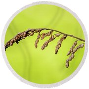 Gone To Seed Round Beach Towel