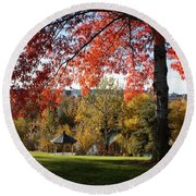 Gonzaga With Autumn Tree Canopy Round Beach Towel by Carol Groenen