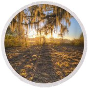 Good Morning At The Oak Round Beach Towel
