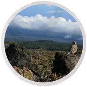 Good Morning Maui Round Beach Towel