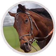 Good Morning - Racehorse On The Gallops Round Beach Towel