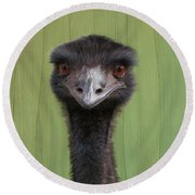 Goofing Around Emu Round Beach Towel