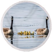 Goose Family Round Beach Towel