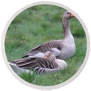 Goose Lookout Round Beach Towel