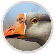 Goose Portrait Round Beach Towel