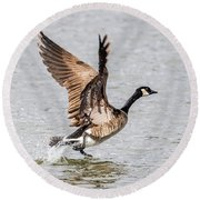 Goose Takeoff Round Beach Towel