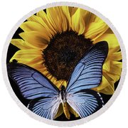Gorgeous Blue Butterfly Round Beach Towel