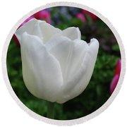 Gorgeous Flowering White Tulip Flower Blossom Round Beach Towel