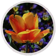 Gorgeous Flowering Yellow And Red Blooming Tulip Round Beach Towel
