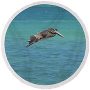 Gorgeous Grey Pelican With His Wings Extended In Flight  Round Beach Towel