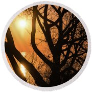 Gorgeous Morning Through The Tree Screen Round Beach Towel