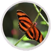 Gorgeous Orange And Black Oak Tiger Butterfly Round Beach Towel