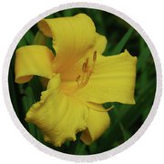 Gorgeous Yellow Daylily In A Garden Blooming Round Beach Towel