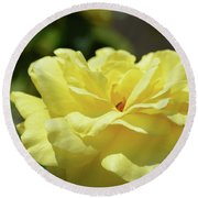 Gorgeous Yellow Rose Round Beach Towel