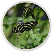 Gorgeous Zebra Butterfly On Some Blue Flowers Round Beach Towel