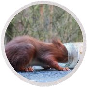 Gorging Squirrel Round Beach Towel