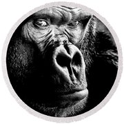 Gorilla Round Beach Towel