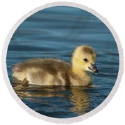 Gosling.. Round Beach Towel
