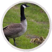 Goslings With Mother Goose Round Beach Towel