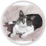 Gracie Jacks Cat Now Round Beach Towel