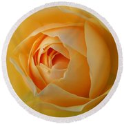 Graham Thomas Old Fashioned Rose Round Beach Towel by Jocelyn Friis