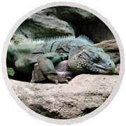 Grand Cayman Blue Iguana Round Beach Towel