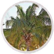 Grand Turk Palms On The Beach Round Beach Towel