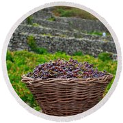 Grape Harvest Round Beach Towel