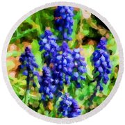 Grape Hyacinths  Round Beach Towel