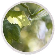 Grape Leaf Round Beach Towel