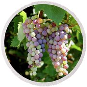 Grapes In Color  Round Beach Towel