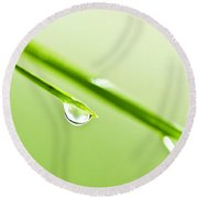 Grass Blades With Water Drops Round Beach Towel