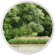 Grasses And Trees Round Beach Towel