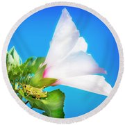 Grasshopper And Blue Sky Round Beach Towel