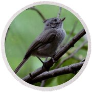 Gray Grey Bird 052814a Round Beach Towel