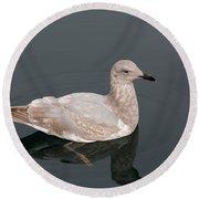 Gray Gull Reflection Round Beach Towel