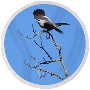 Gray Hawk Retreat Round Beach Towel