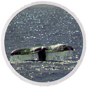 Gray Whale Round Beach Towel