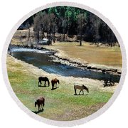 Grazing 2 Round Beach Towel