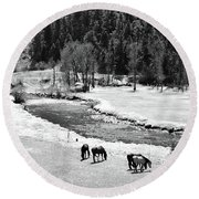 Grazing Bw Round Beach Towel