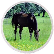 Grazing Horse In The Flowers Round Beach Towel