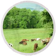 Grazing In The Morning Round Beach Towel