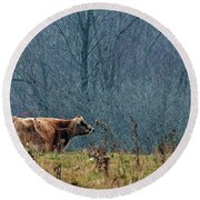 Grazing In Winter Round Beach Towel