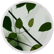 Green Leaves 2 Round Beach Towel