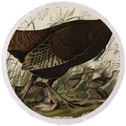 Great American Hen And Young Round Beach Towel by John James Audubon