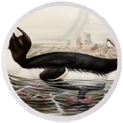 Great Auk Round Beach Towel