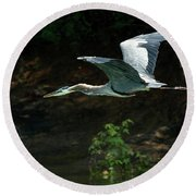 Great Blue Fly-by II Round Beach Towel