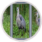 Great Blue Heron Collage Round Beach Towel