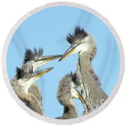 Great Blue Heron Discussion Round Beach Towel